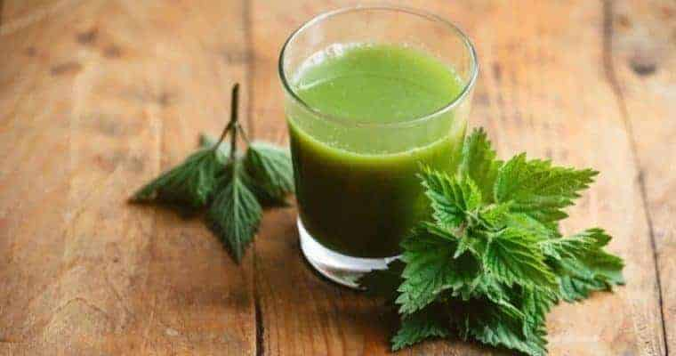 Herbal remedies to boost the immune system. Nettle Leaf Juice. Healing Herbs, Holistic Health,  Home Remedies.