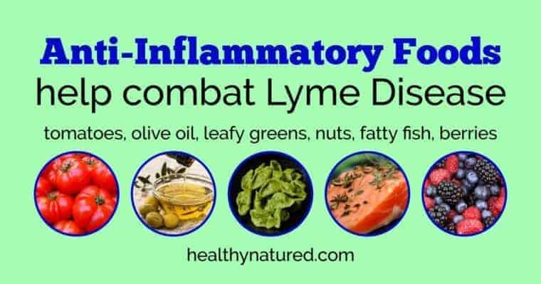 top holistic treatments natural cure lyme disease