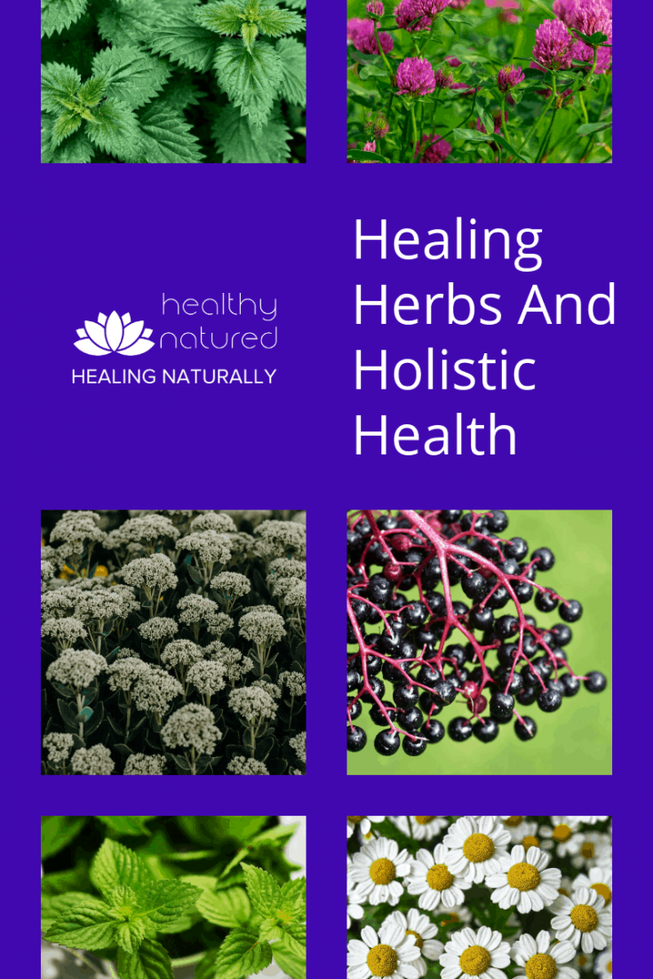 Healing Herbs Holistic Health Home Remedies Pin