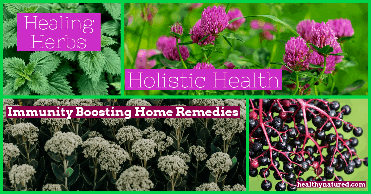 9 Healing Herbs For Holistic Health (Immunity Boosting Home Remedies)