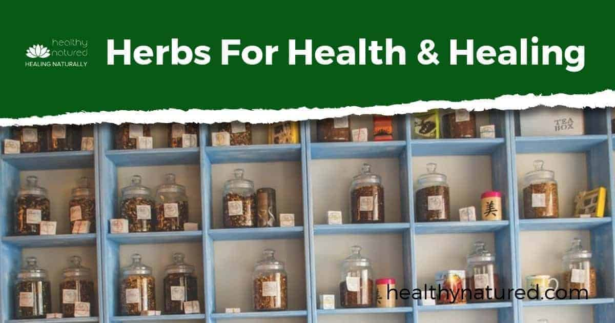 Herbs For Health And Healing (9 Herbal Remedies To Boost Immune System)