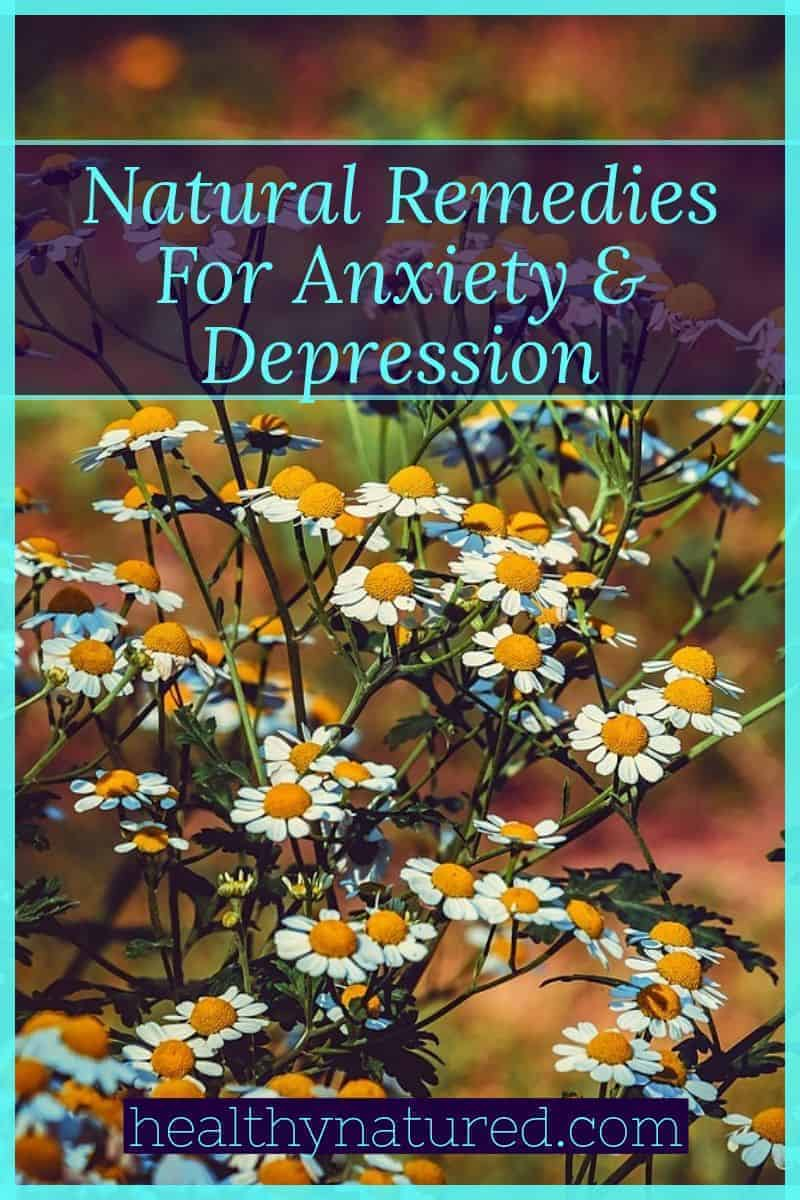 9 Best Herbal &Amp; Natural Remedies For Anxiety And Depression Guide.