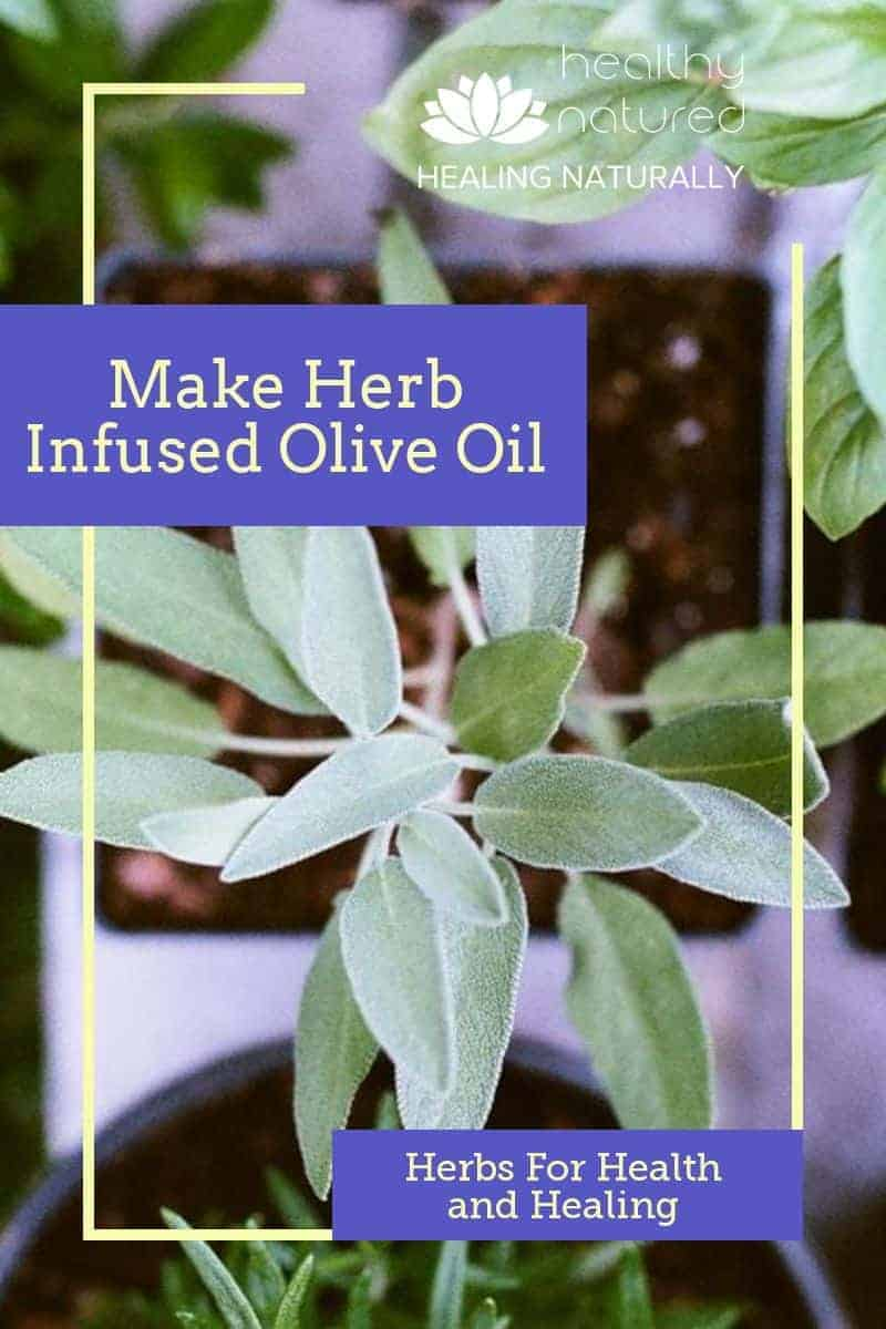 Make Herb Infused Olive Oil For Health And Healing