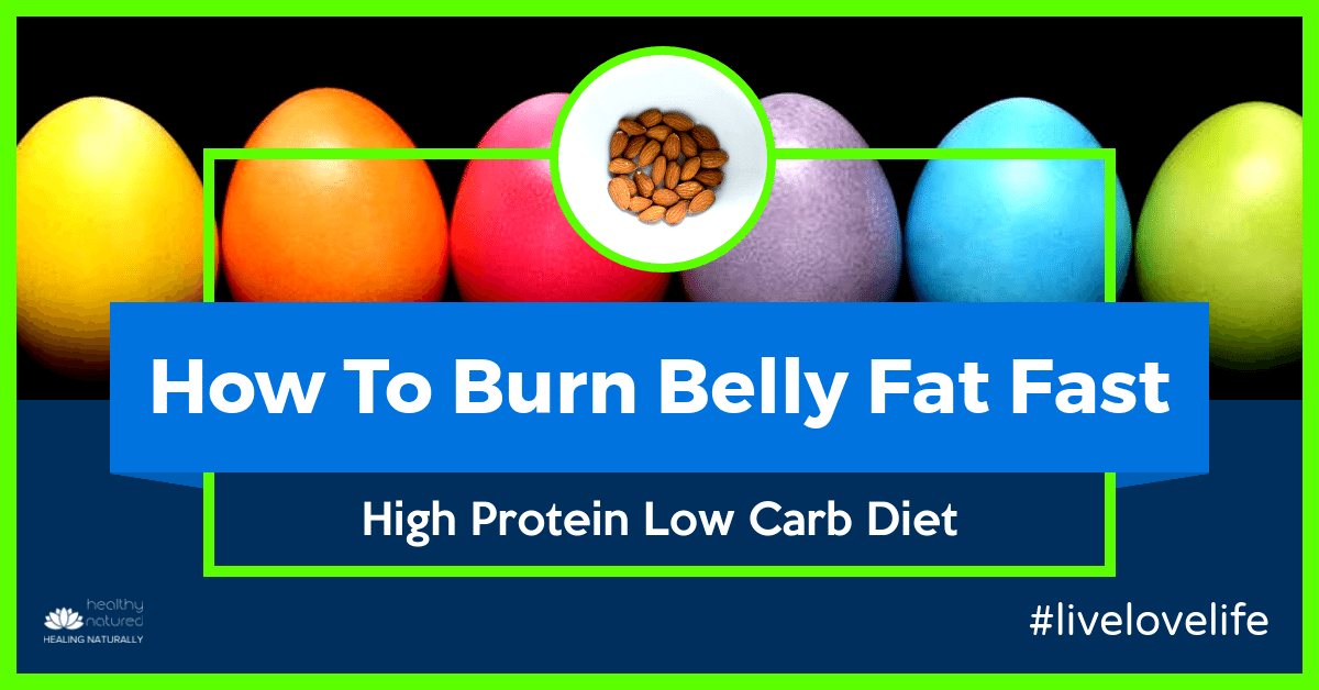 High Protein Low Carb Diet (How To Burn Belly Fat Fast In 2018)