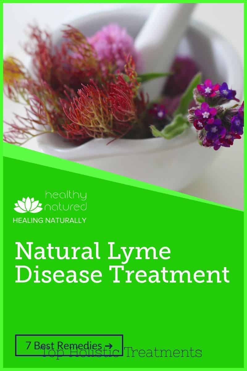 Natural Lyme Disease Treatment – Top Holistic Treatments