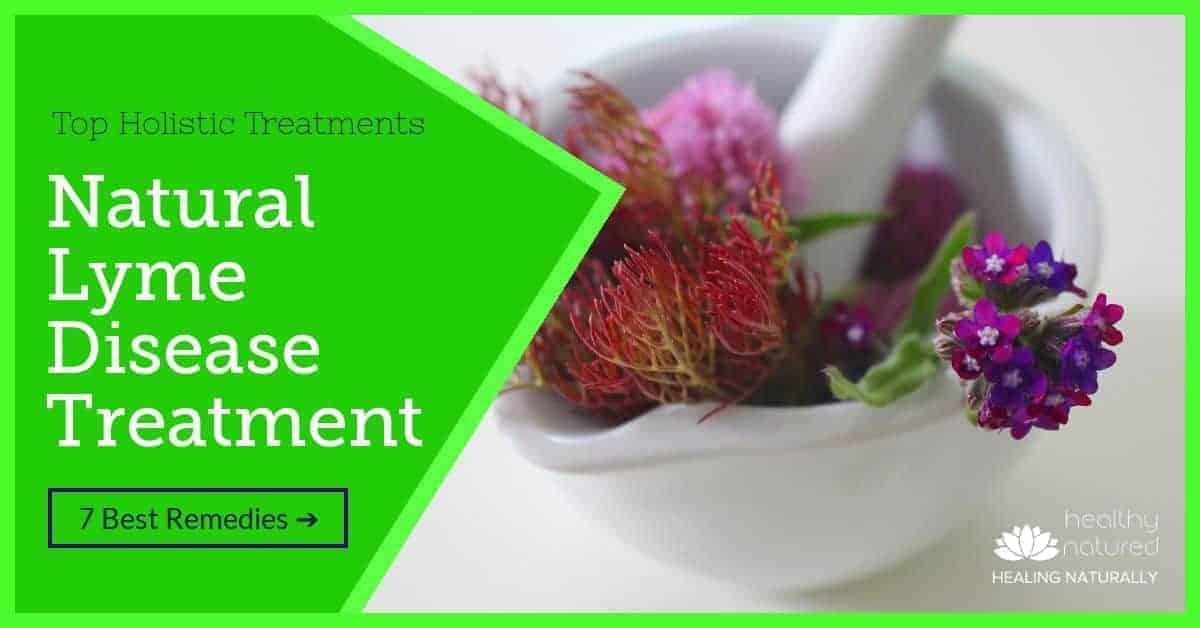 Natural Lyme Disease Treatment – Top Holistic Treatments