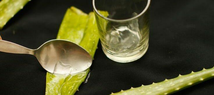 Benefits Of Aloe Vera Skin Care - Aloe Gelextraction