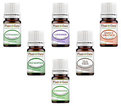 Essential Oil Gift Set Sampler Kit 6 - 5 Ml. 100% Pure Therapeutic Grade Lot