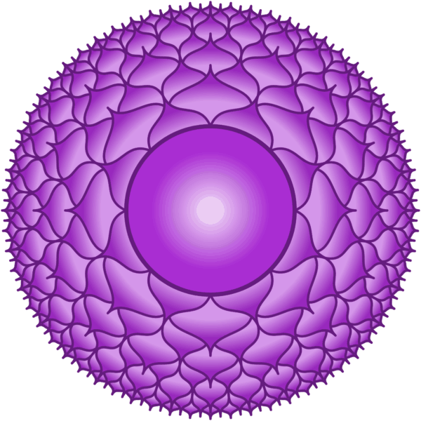 Sahasrara The Crown Chakra