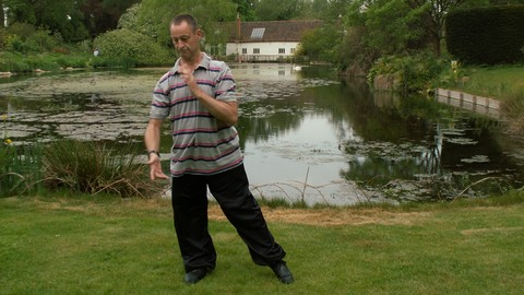 Qigong Shibashi Set One