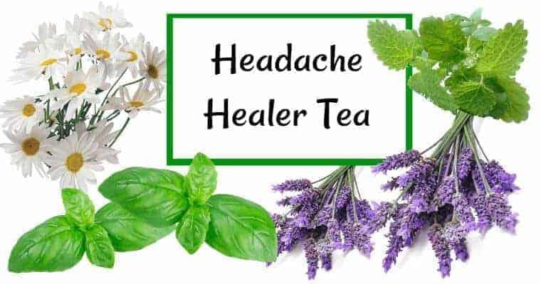headache healer alternative health teas for cold and flu symptoms