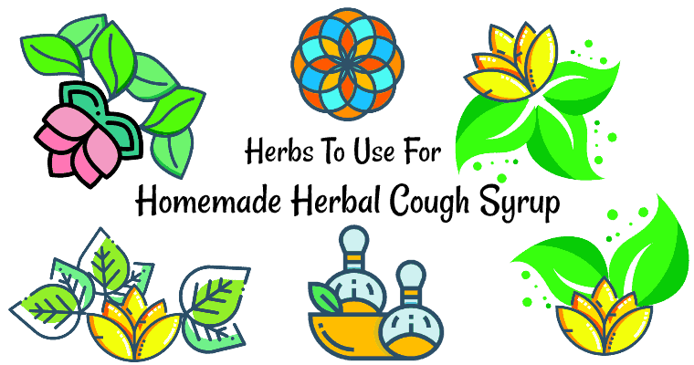 herbs to use for the homemade herbal cough syrup