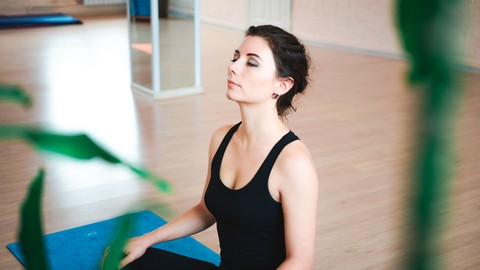 The Meditation Transformation: Mindfulness For Beginners