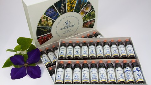 Certified Diploma Flower remedies