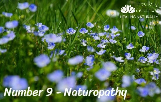 Complementary Medicines - Naturopathy