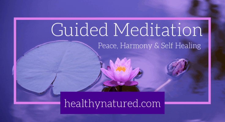 Guided Meditation For Peace Harmony Self Healing