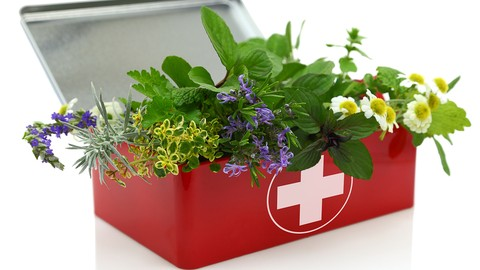 Herbalism :: First Aid Remedies