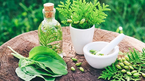 Herbalism: Transform Kitchen Herbs into Healing Remedies