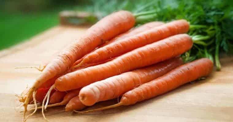 Carrots - Superfoods List
