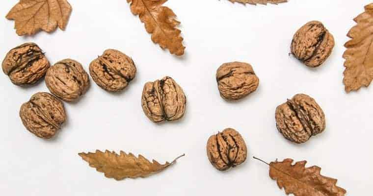Walnuts - Ultimate Superfoods List For Healthy Vision