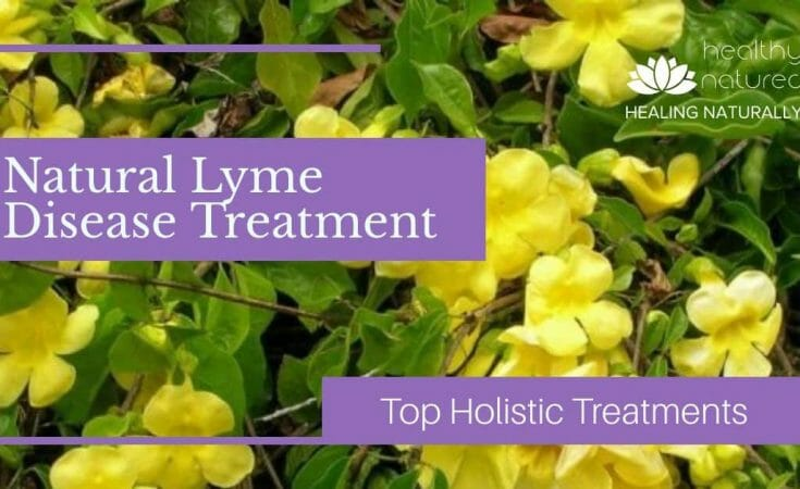 natural lyme disease treatment