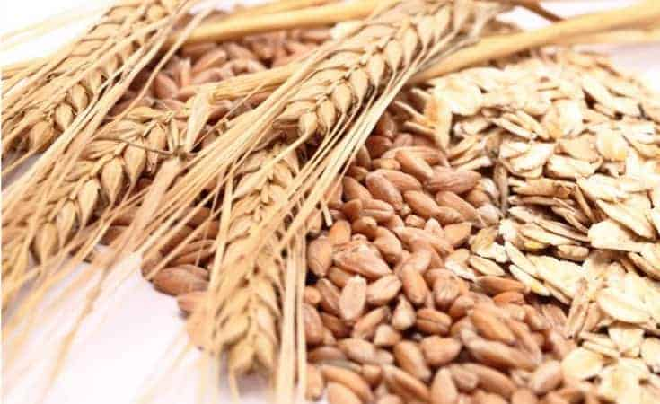 Whole Grains - 7 Delicious Foods To Eat To Lose Weight In The Belly Fast